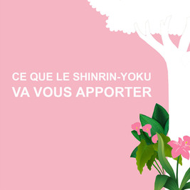 Le shinrin-yoku