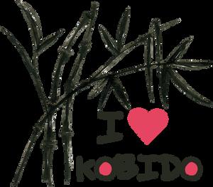 Les bienfaits du Kobido