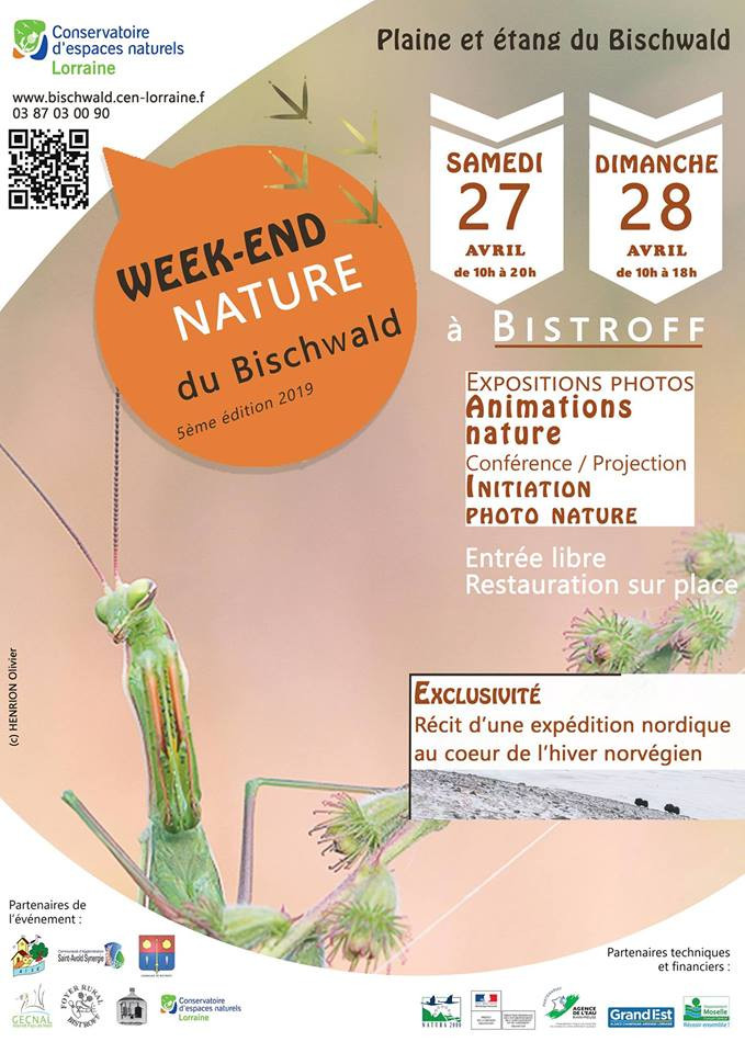 Week end Nature du Bischwald.jpg