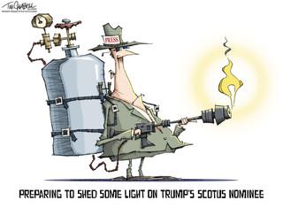 Shedding Light.jpg