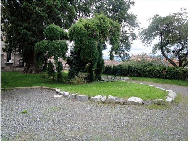 Le jardin et le séquoïa