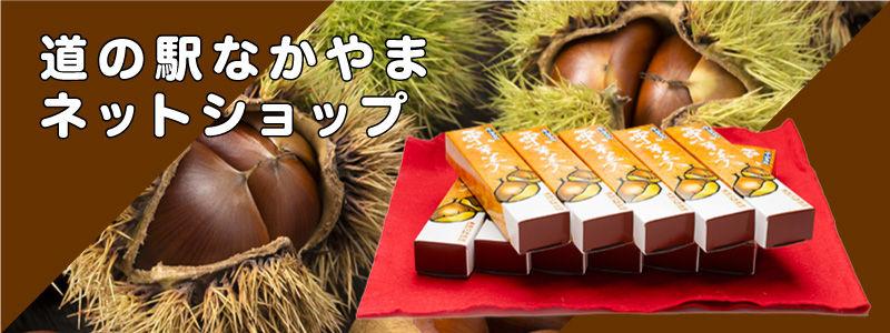 banner_netshop.jpg