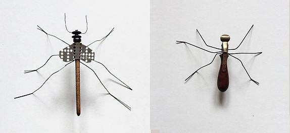 insecte-03.jpg