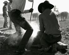 cowpuncher5.jpg