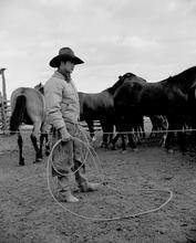 Cowboy 2-49 F#9.jpg