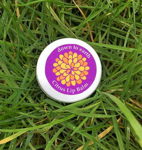 Citrus Lip Balm (10g)