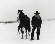 cowboy6.jpg
