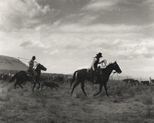 cowboy8.jpg