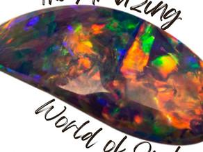The Amazing World of Opal