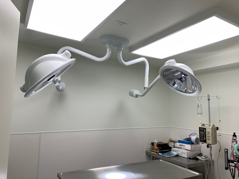 5 Vet Surgical Room.jpeg