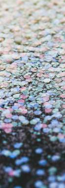 COMING SOON: Cosmetic Bioglitter PURE OPAL Mix 17.jpg