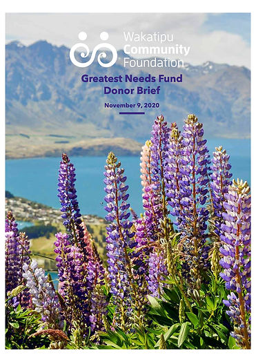 GNF Donor Brief cover image.jpg