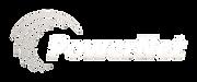 PowerNet_logo_gradient.png