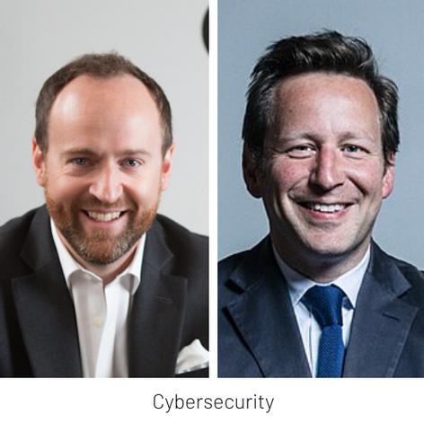 LTC Perspectives Webinar Ten: Online Reputation, Cybersecurity and Disinformation