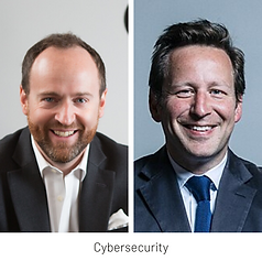 LTC Perspectives Webinar 10: Online Reputation, Cybersecurity and Disinformation