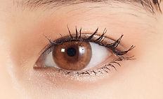 eye_sepiahazel.jpg