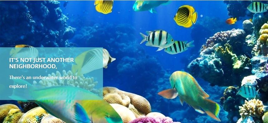 diving_Tambuli