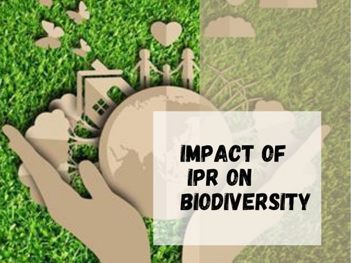 Impact of IPR on Biodiversity