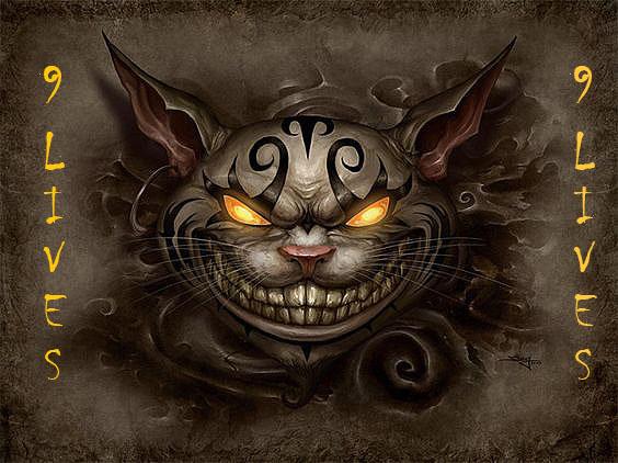 9_LIVES_CAT