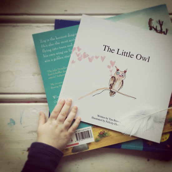 The Little Owl Book
