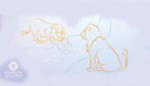 Cub Lion Reflection.jpg