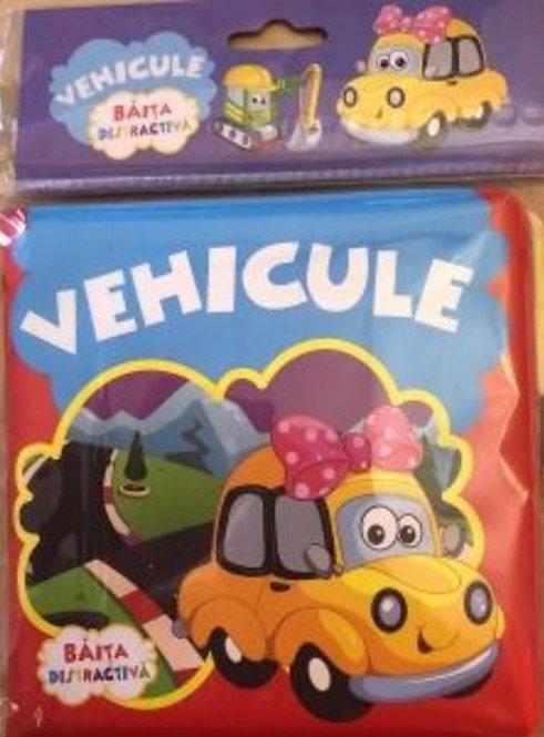 Vehicule. Colectia Baita Distractiva