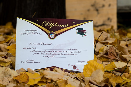 Diploma personalizata (peste 6 buc)