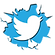 twitter-bird-badge-in-white.png