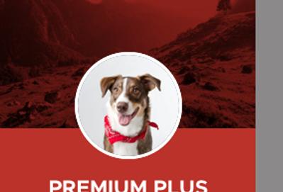 Premium Plus -  Poulet/Boeuf Abats Vitamines Légumes 12lbs
