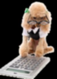 chien calculatrice