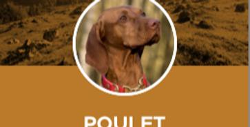 -Poulet 12lbs