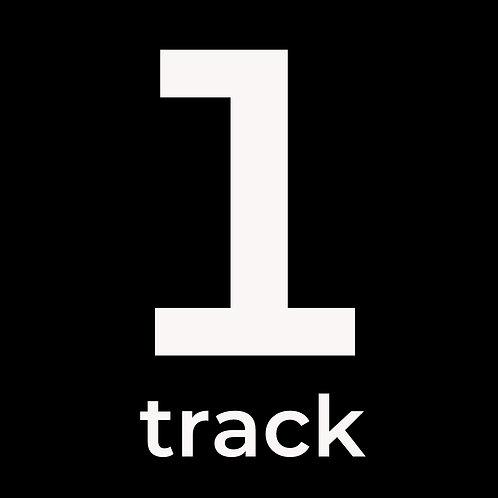 1 Track Mastering