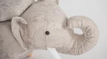 Benjamin - unser kleiner Elefant