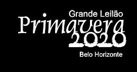 leilao_primavera2020.png