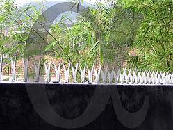 Instalação Residencial - Wall Spikes (lanças protetoras)