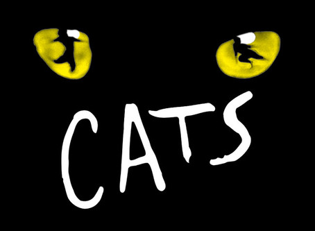 CATS workshop Today!