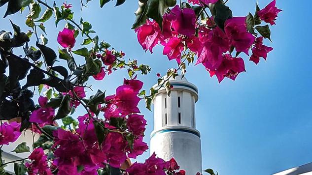Montinho da luz - casa de férias Algarve