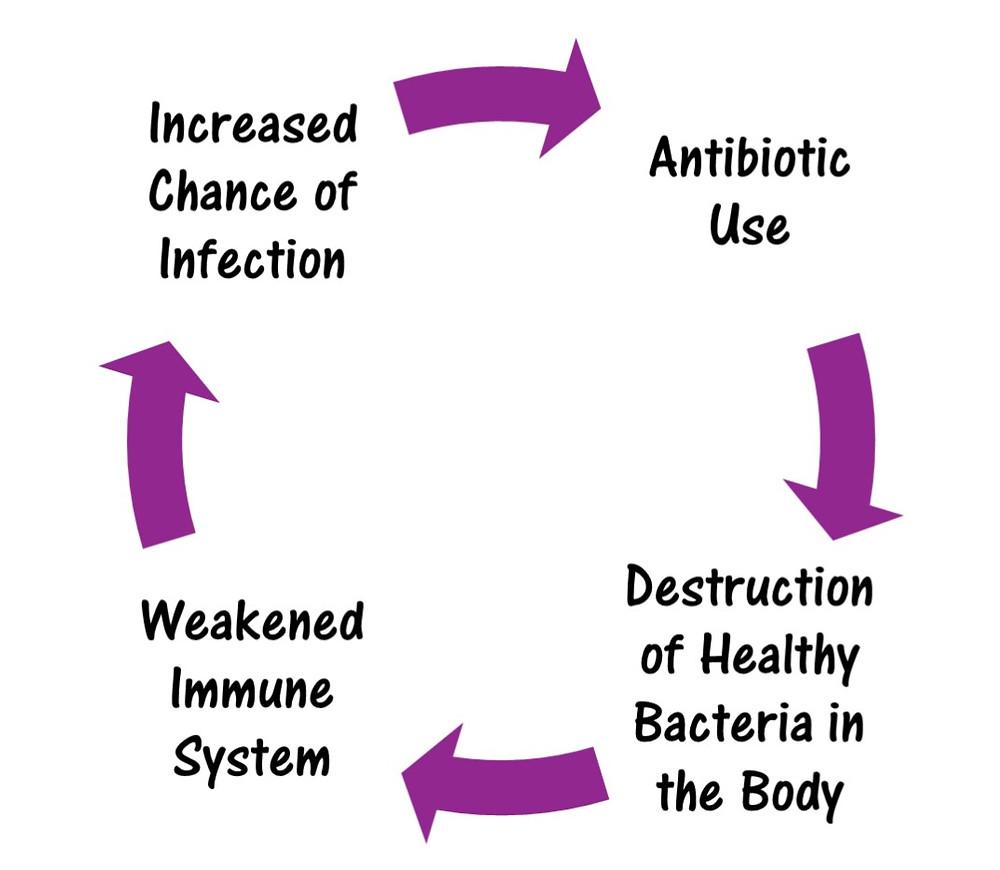 Ear infection cycle.jpg