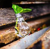 Innovation and Entrepreneurship.jpg