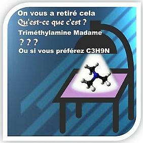 Freud_triméthyl_pub_Image1_(2).jpg