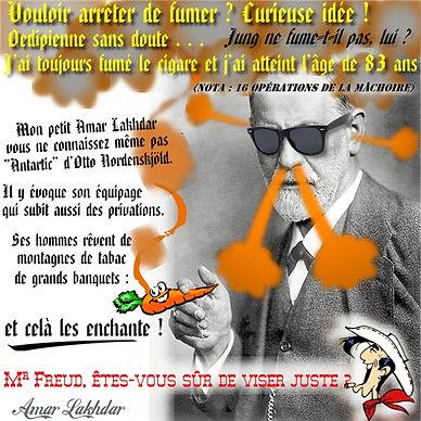 dreamer Freud carotte 50%.jpg