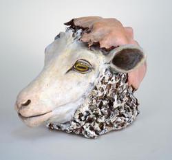 TheaCinnamonMaker-Sheeple-AwardOfExc