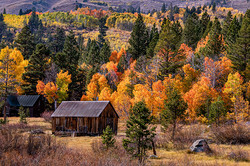"""3rd Place Photography """"Fall Colors"""""""