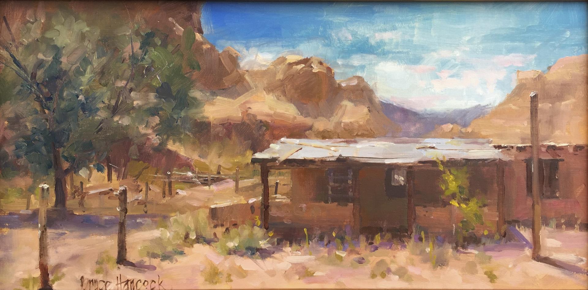 BruceHancock-desert_silence-AnitaWolffAw