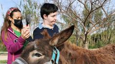 """""""El burro es sociable, dócil, paciente y tiene buena memoria"""" de @AquiMediosDeComunicacion"""