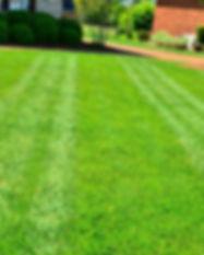 lawn-care-643563_1920.jpg