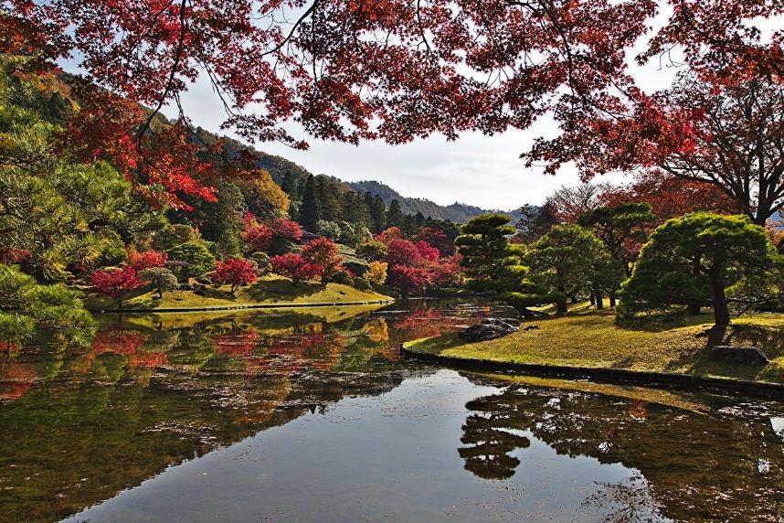 buntes Herbstlaub in japanischen Gärten