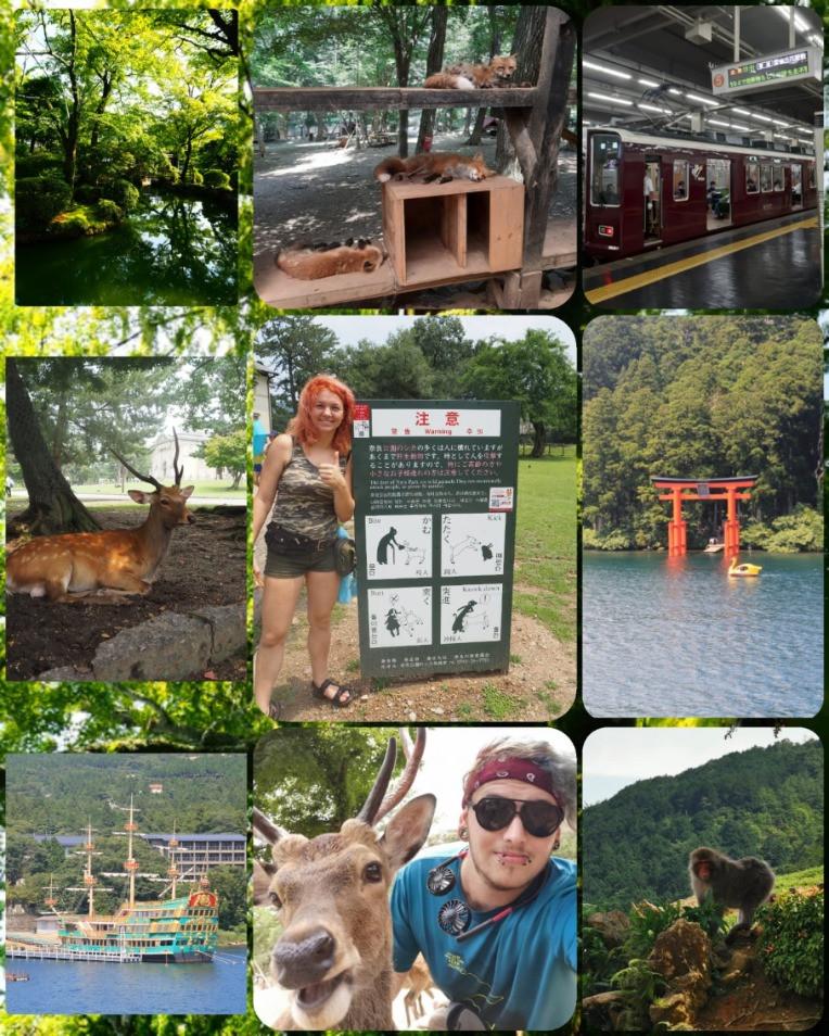 Erlebnisse in Hakone, Nara und Zao