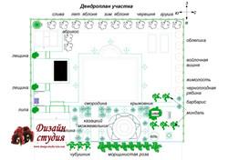 дендро план