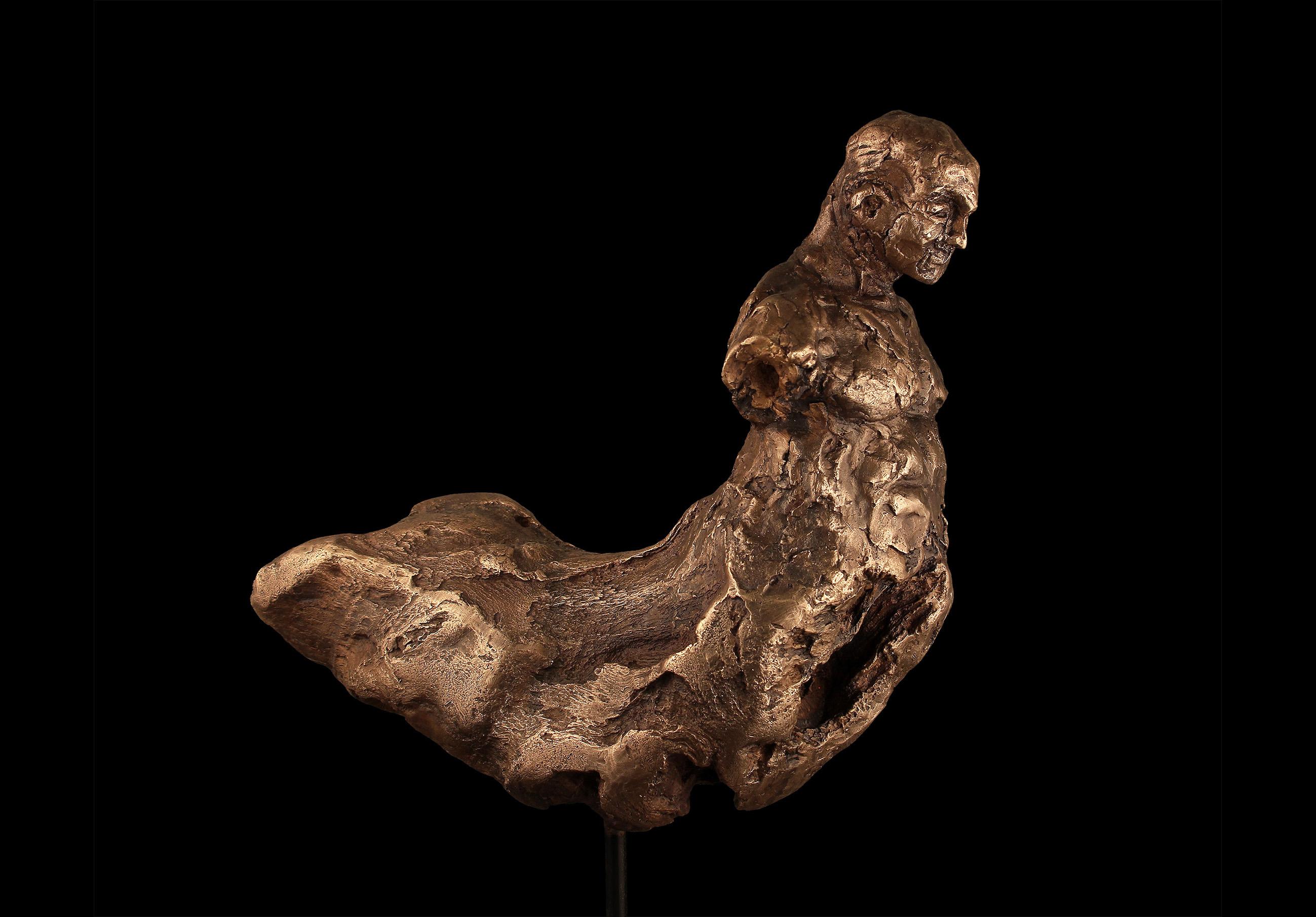10_Achim_Ripperger_2019_Centaur_Bronze_Â